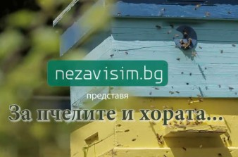 За пчелите и хората